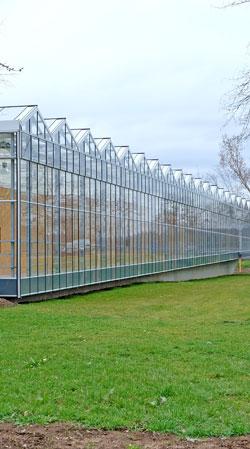 Besucherzentrum und Haupteinganz zum Freilichtlabor Lauresham