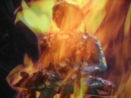 Flammen(1)