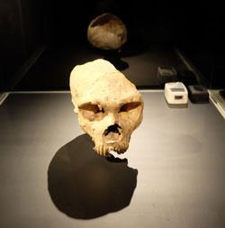 Der Schädelfund eines Neandertalers  in Forbes' Quarry auf Gibralter. An der Südspitze Spaniens hatten die Neandertaler wohl am längsten überleben können. © massow-picture