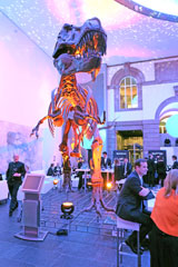 Eine spektakuläre Kulisse: Feiern und Anstoßen mit   T-Rex.© massow-picture