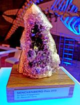 Amethystdruse: Senckenberg-Preis für Naturengagement © massow-picture