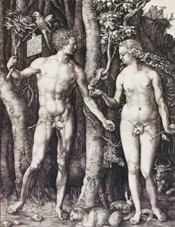 Albrecht Dürer Adam und Eva, © Hessisches Landesmuseum