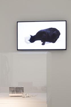 Foto © Anja Jahn Museum für Angewamdte Kunst
