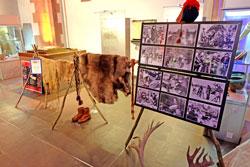 Ausstellungsstücke aus  dem Alltagsleben der Saamen, hier: diverse Felle und Geweihe, aber auch eine Bilderschau über ihr Leben.  © massow-picture