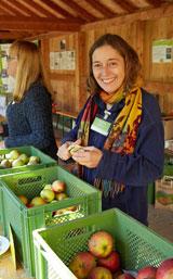 Die besten Äpfel werden zur Verkostung und zum Verkauf angeboten – inklusive Infos für Apfel-Allergiker. Foto: Wolfgang Sauer