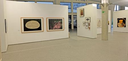 """EZB die Ausstellung """"Von den Fünfzigern bis heute – die Kunstsammlung der Deutschen Bundesbank""""  Foto: Diether v. Goddenthow © atelier-goddenthow"""