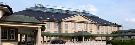 Henkellsfeld. Foto: Diether v. Goddenthow