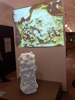 Ein 100 mal vergrößerter Regenwurm-Kothaufen und dahinter ein Regenwurmprojektion empfängt die Besucher der Ausstellung Erdreich.Foto: Diether v Goddenthow