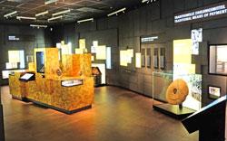 Im Geldkabnitt wird das Münz-Thema von der Antike bis zur Gegenwart aufgearbeitet. Foto: Diether v. Goddenthow © atelier goddenthow
