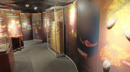 Ausstellunge-Impression: Dünne Haut der Erde, hier in der Kammer der Krümel, in der es um Bodenkunde geht. Foto: Diether v. Goddenthow  © atelier goddenthow