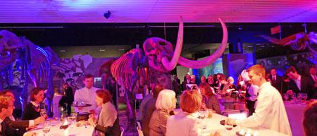 """Lichthof 2, Dinieren und Plaudern unter Mamut-Zähnen im   """"Waal- und Elefanten-Saal"""" Foto: Heike v. Goddenthow  © atelier-goddenthow"""