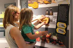 Wie viel Boden beanspruchen wir für unsere Lebensmittel? Die Ausstellung verrät es! Foto: Senckenberg, Jacqueline Gitschmann