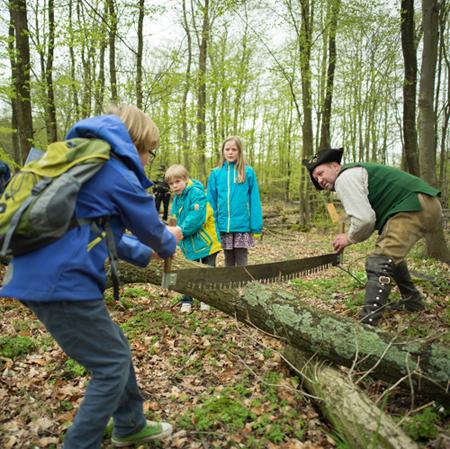 Beim Wald- und Holztag können Besucher auch selbst aktiv werden. Foto: Sascha Erdmann