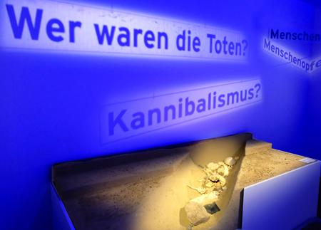 Offenbar handelt es sich in Herxheim, um ein einzigartiges Ritual, in dem das Fleisch der geopferten Menschen möglicherweise auch verspeist wurde. Kanibalismus vor 7000 Jahren in Rheinland-Pfalz, das ist eine der zahlreichen Fragen, die in der Ausstellung vorZeiten im Landesmuseum Mainz gestellt werden. Foto:. Diether v. Goddenthow