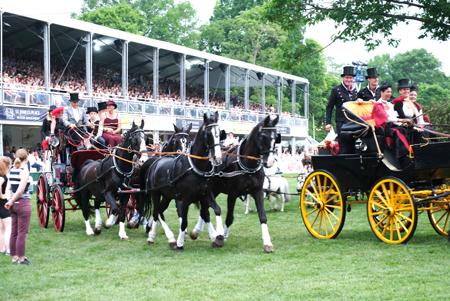 Wiesbadener Kutschen-Defilee auf der 22. Pferdenacht im Biebricher Schlosspark anlässlich des 81. Internationalen Wiesbadener Pfingstturniers Foto: Diether v. Goddenthow © atelier-goddenthow