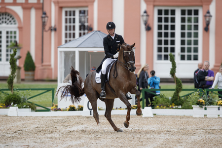 Zwei Starts, zwei Siege für Sönke Rothenberger mit Favourit. Foto: Sportfotos-Lafrentz.de