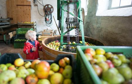 Apfelfest im Hessenpark am 21. und 22. Oktober. Foto: Sascha Erdmann