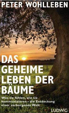 d.geheime.leben.d.baeume