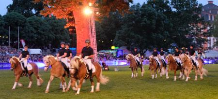 18 Haflinger vom Hessischen Haflinger Zucht- und Sportverein, allesamt mit Leuchtgirlanden in der Mähne.© Foto: Diether v. Goddenthow