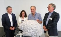 """Dr. Martin Cepek, Dr. Astrid Proksch, Karl-Heinz Körbel und Prof. David Poeppel, PhD, mit dem 1:10 Modell des """"Begehbaren Gehirns"""". Copyright: Senckenberg/Neunzehn"""