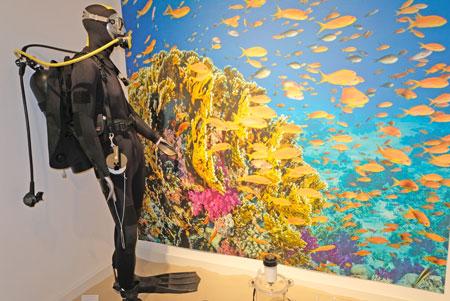 """""""Senckenberger""""-Korallenforschungs-Taucher, unter anderem  mit Transektline zur Markierung des zu untersuchenden Riff-Bereichs.© Foto: Diether v. Goddenthow"""