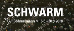 schwarm250