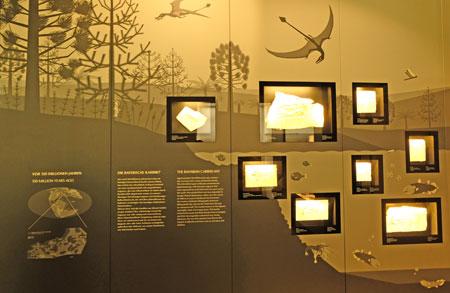 """Bayerische Karibik, Ausstellungsstation 2, der Ausstellung """"Gefiederte Dinosaurier"""" des Senckenberg Naturmuseums Frankfurt. © Foto: Diether v. Goddenthow"""