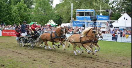 Kutschenkorso und Pferdenacht stimmen zum PfingstTurnier ein. Archivbild 2018 © Foto: Diether v. Goddenthow