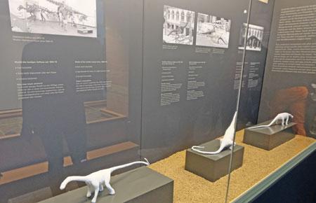 Seit dem ersten Fund versteinerter Knochen von Diplodocus 1877 gab es verschiedene Theorien zu dessen Körperbau und Lebensweise. Anhand der hier gezeigten Modelle werden die verschiedenen Forschungs-Stadien bis heute nachempfunden. ©  Foto: Diether  v Goddenthow.