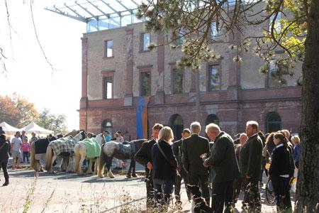 WRFC-Sternritt: Friedliches Kunterbunt vor dem Jagdschloss  Foto: Silke Hiller