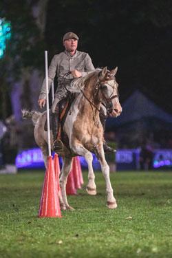 Erst als Schaunummer in der PferdeNacht, in diesem Jahr als fünfte Wettbewerbs-Disziplin in Wiesbaden: Working Equitation Foto: Tomspic.com