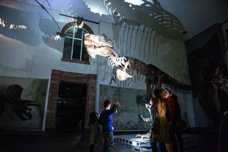 Mit der Taschenlampe nachts durch das dunkle Museum.Foto: Michael Frank