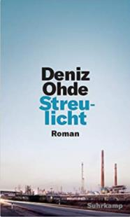 streulicht-cover