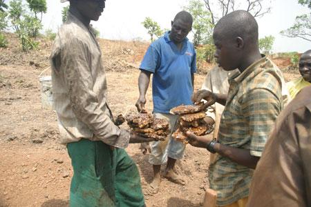 Auch heute noch beliebt: Grabungsmitarbeiter essen frisch gesammelten wilden Honig (Foto: Peter Breunig, Goethe-Universität Frankfurt)