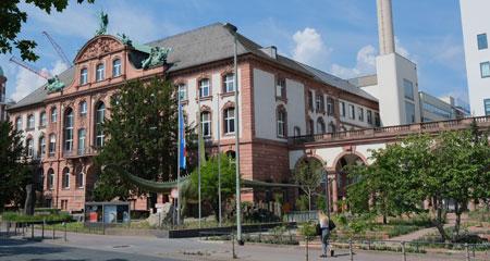 Senckenberg Naturmuseum  Archivfoto  ©  Diether v. Goddenthow