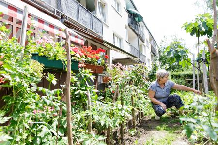 Grün_Alihoctzic Fata+Frau Winnig 13.06.20 Die Stadt und das Grün – Stadtlabor Gärtnern ©HMF