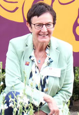 Dr. Vera Rupp, Direktorin der Keltenwelt Glauberg © Foto Diether v. Goddenthow